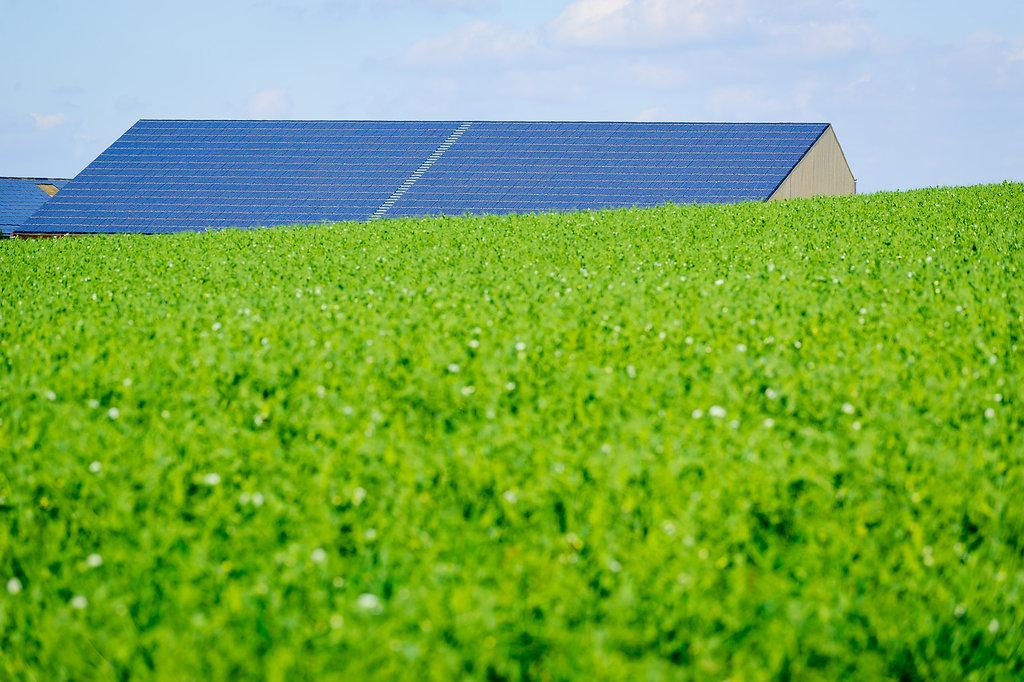 SHOTT Solar - Panneaux solaires